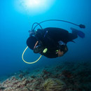 Starigrad Paklenica - Diving
