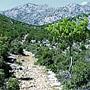 Starigrad Paklenica - Mirila